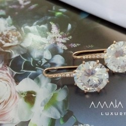 Luxurious earrings with large stones